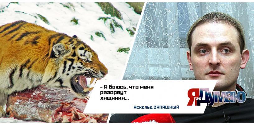 Бесстрашный козёл зафрендился с амурским тигром!