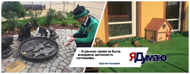 Авторский коллектив зеленоградского проекта «Котошеф» награжден национальной премией «Серебряный Лучник»