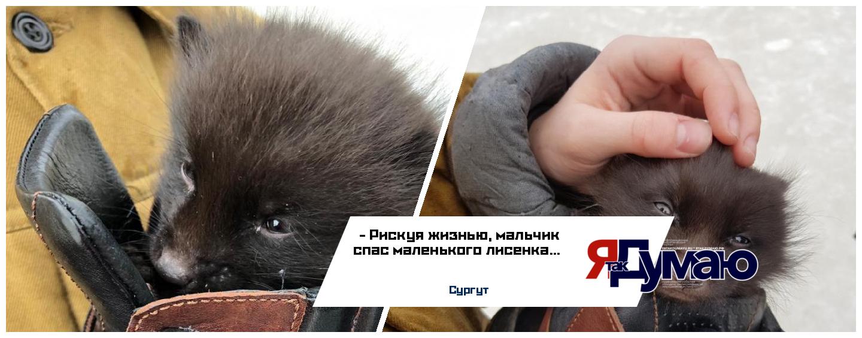 Рискуя жизнью, мальчик спас маленького лисенка
