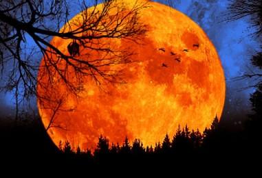 У меня есть кусочек луны — Александр Тепляшин