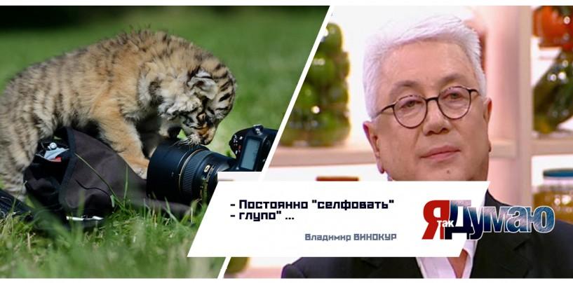 Тимати сделал селфи с Путиным, Басков — с  Медведевым, а кто-то —  с тиграми.