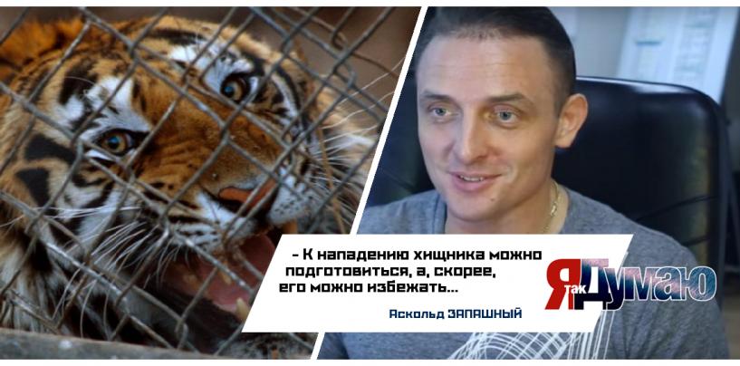 Тигр разорвал ногу пьяной школьнице. Аскольд Запашный о страхе перед хищниками.