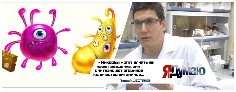 Андрей Шестаков: «Микробы — это отдельный орган, который нам необходим».