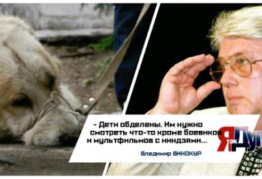 В Хабаровске грозят убийством живодёрам. Почему подростки ведут себя, как звери?