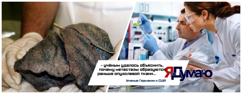 Западные учёные смоделировали картину развития раковых заболеваний