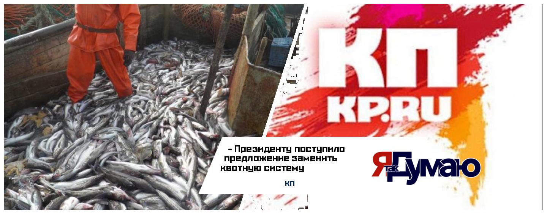 Встревоженные российские рыбаки обратились к Путину с просьбой