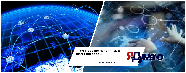 Гендиректор «Инносети» поддерживает идею создания IT-кластера в Калининградской области