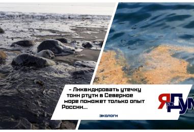 Экологи Норвегии считают, что только вмешательство России позволит спасти биоресурсы Северного моря от тонн ртути