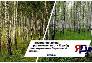 Екатеринбуржцы просят Владимира Путина о защите парка на Краснолесье